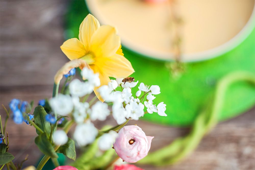 Blumen und Biene