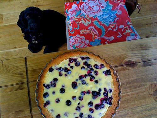 Admission – the pie in the above photograph is not one that I made myself. It was baked and served by my friend, Mari, and her partner, Janne, when I visited them in Tampere last week. As …