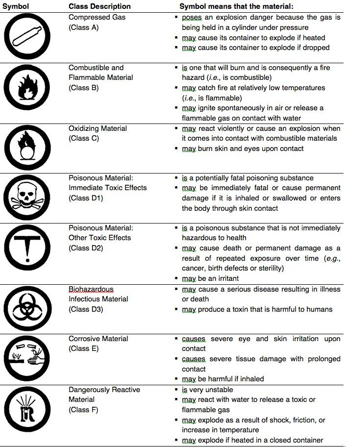 Pin by Linda Giesige on science Lab report template, Lab report