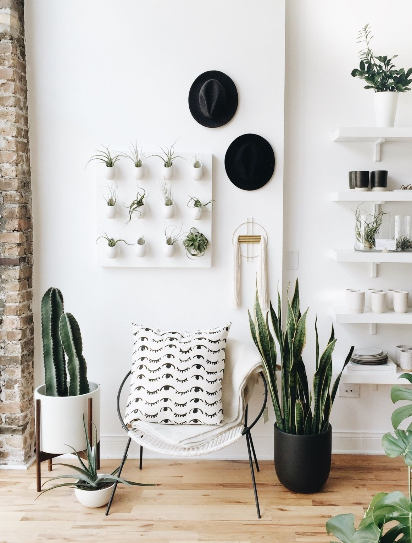 Variantes de cactus dans une déco épurée (photo : gather home & lifestyle)