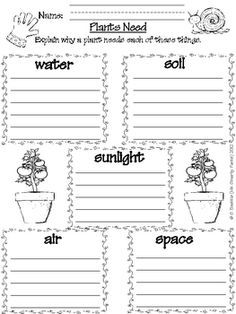 Image Result For What Do Plants Need To Grow Worksheet With