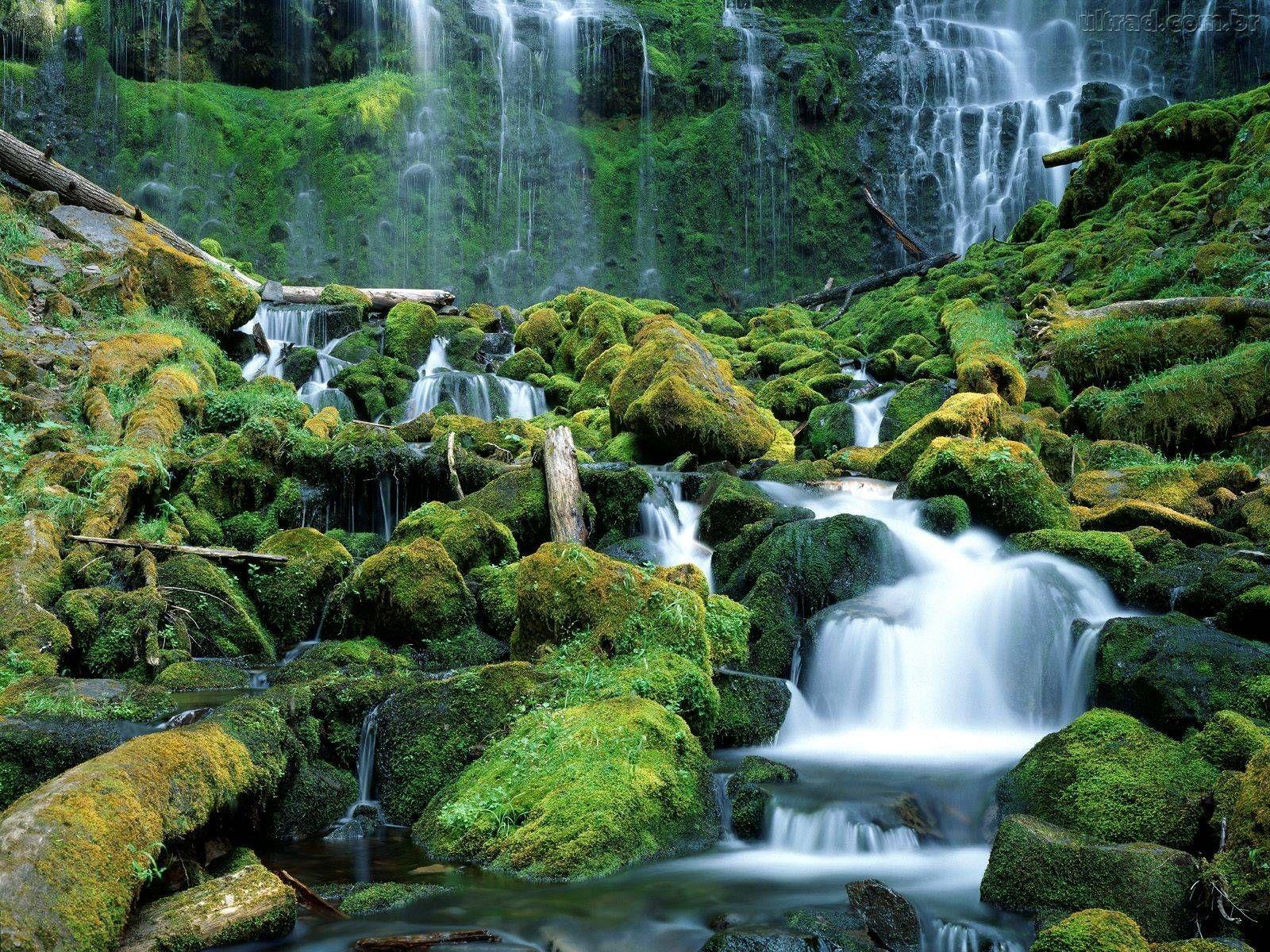 Harmony http://www.pinterest.com/pin/find/?url=http%3A%2F%2Fimagensface.com.br%2Fimagens%2Fimagens-de-paisagens-naturais