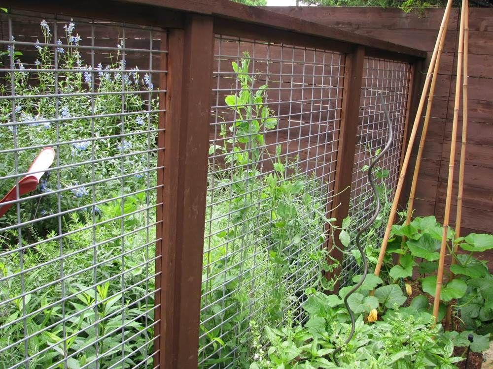 Exceptionnel 18 DIY Garden Fence Ideas To Keep Your Plants