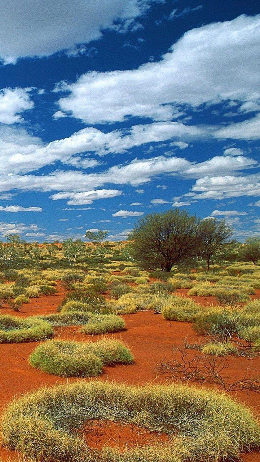Little Sandy Desert , Bioregion, Australia PixoHub