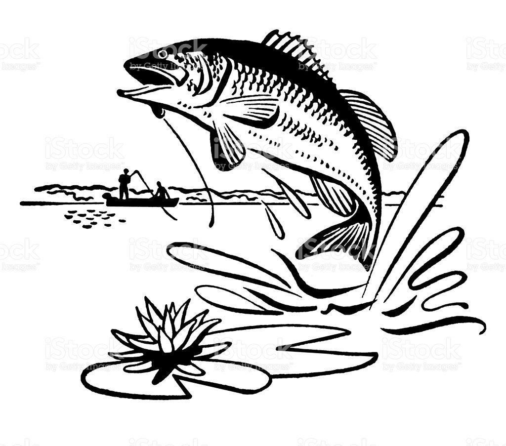 Jumping Fish Fish illustration, Image of fish, Fish vector