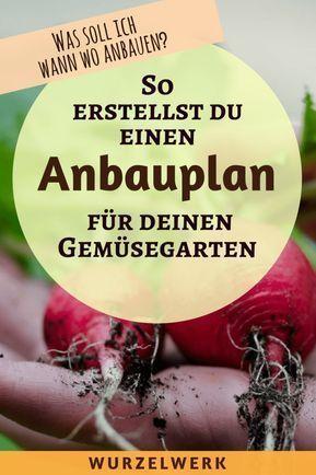 Wie Du Einen Anbauplan Fur Deinen Gemusegarten Erstellst Beispielplan Wurzelwerk Garten Anpflanzen Anbau Gartenarten