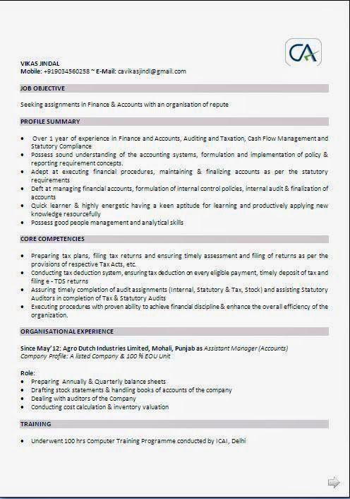 Curriculum Vitae En Ingles Sample Template Example Ofexcellent