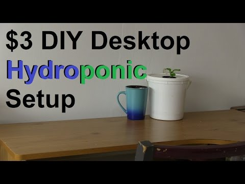 How to Make a Simple 3 DIY Desktop Hydroponic System