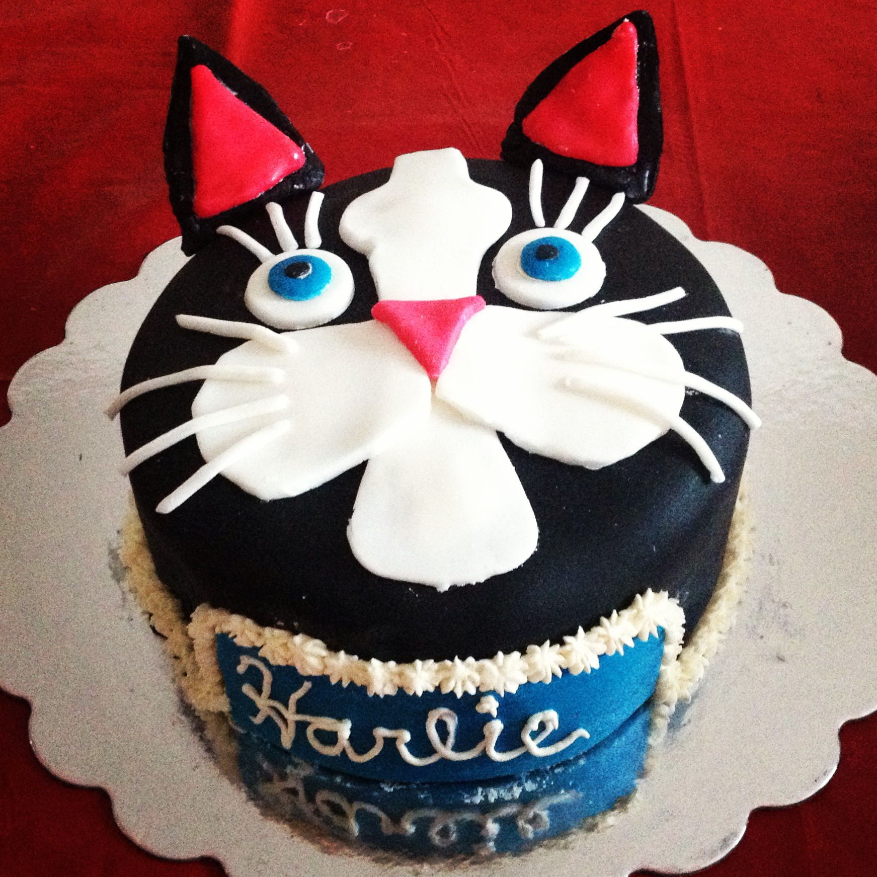 Black cat cake! Themed birthday cakes, Cat cake, Cake blog