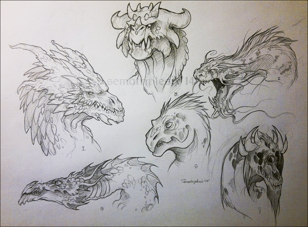 Coloring Pages For Dragons : Nordic dragon coloring pages google search patterns templates