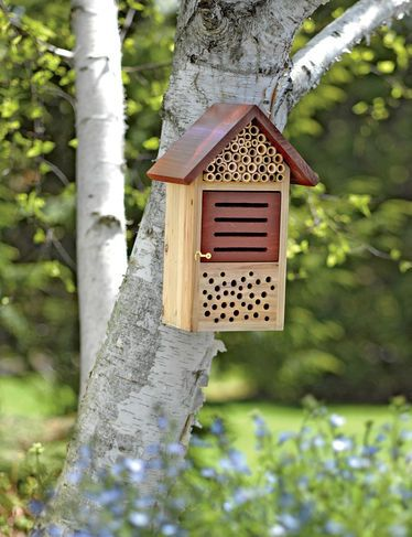 Beneficial Bug House from Gardener\'s Supply Company (www.gardeners ...