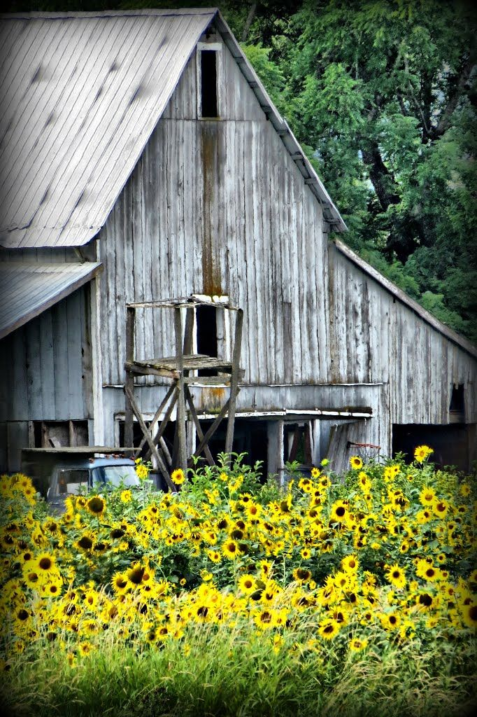 Bc Barns : barns, North, Okanagan,, Canada, Barn,, House, Styles,