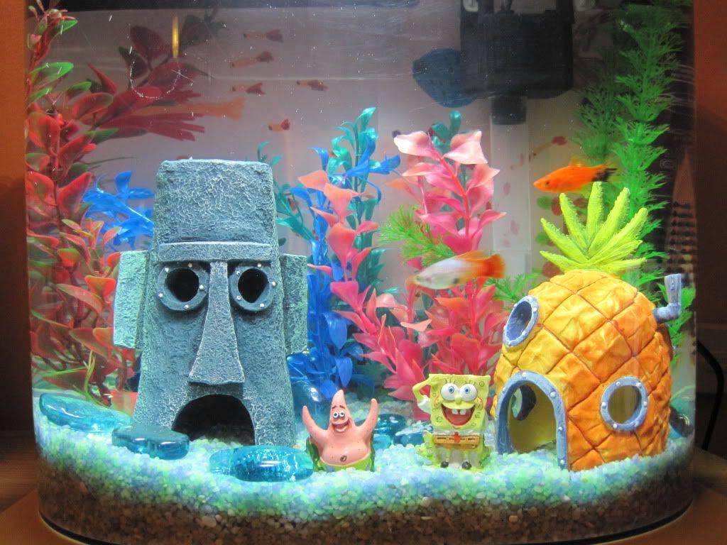 Kids favorite fish tank Fish tank, Favorite child, Boy room