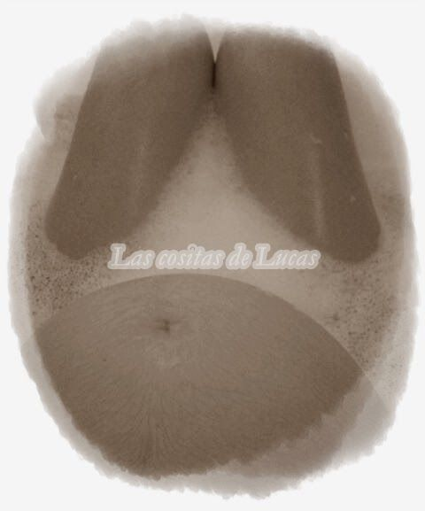 Las+cositas+de+Lucas:+Maternidad+y+feminidad