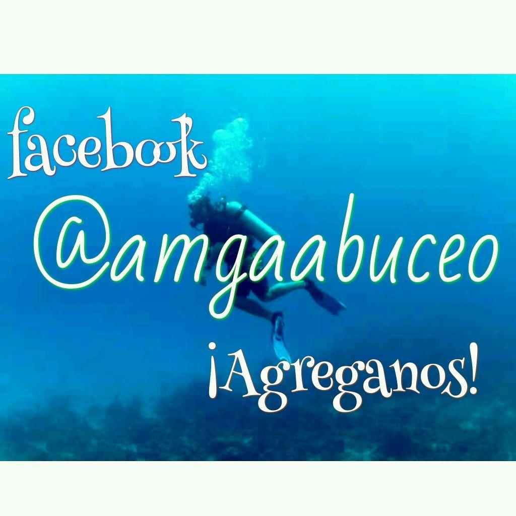 Escuela de buceo Amgaa de San Isidro  Facebook: @amgaabuceo Instagram: @amgaabuceo http://amgaadivingschool.wixsite.com/amgaadivingschool
