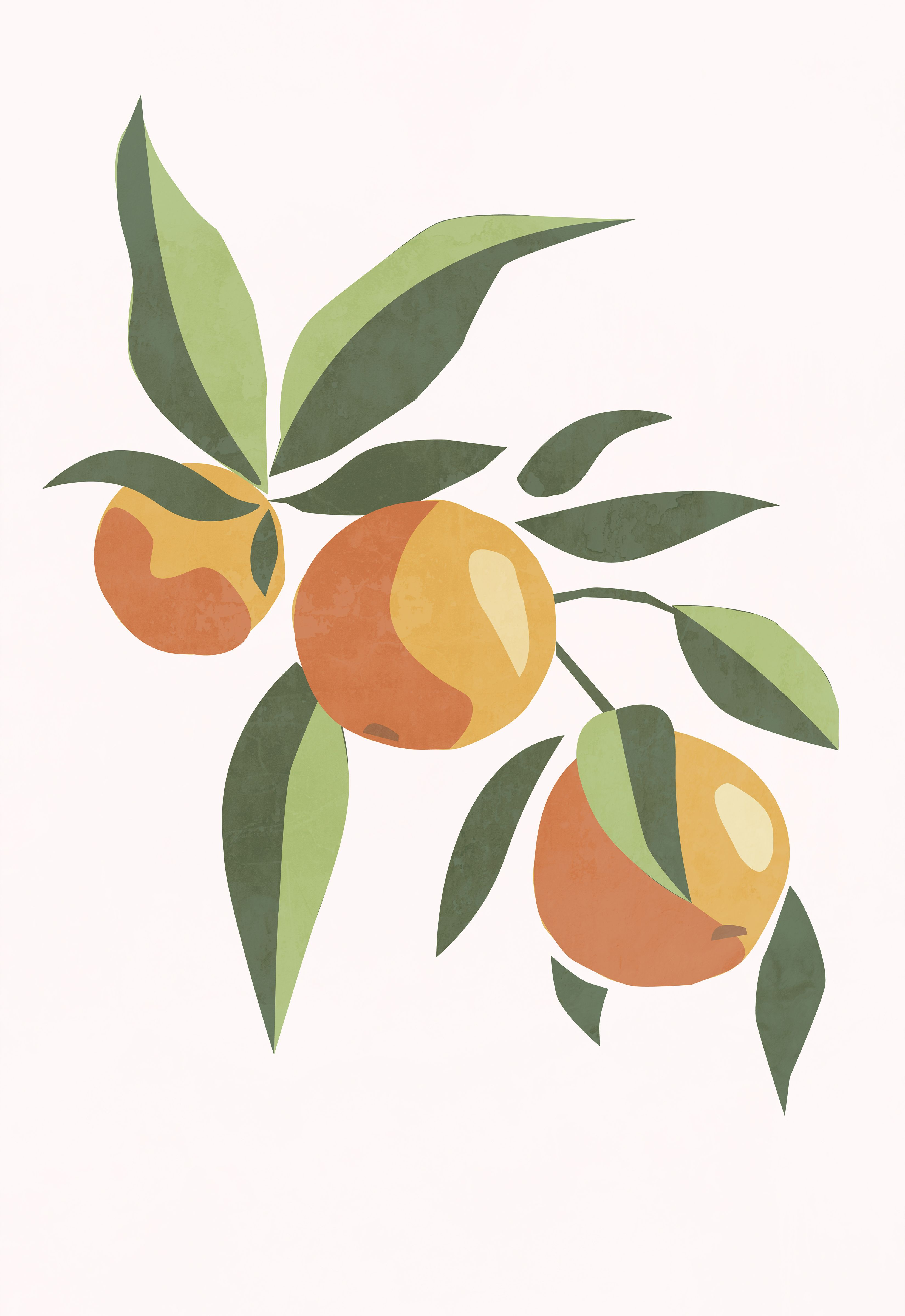 Modern Orange Tree Branch Print Fruit Wall Art Food Poster Plant Poster Kitchen Wall Art Bedroom Wall Decor Abstract Painting In 2020 Painting Art Projects Diy Canvas Art Art Painting