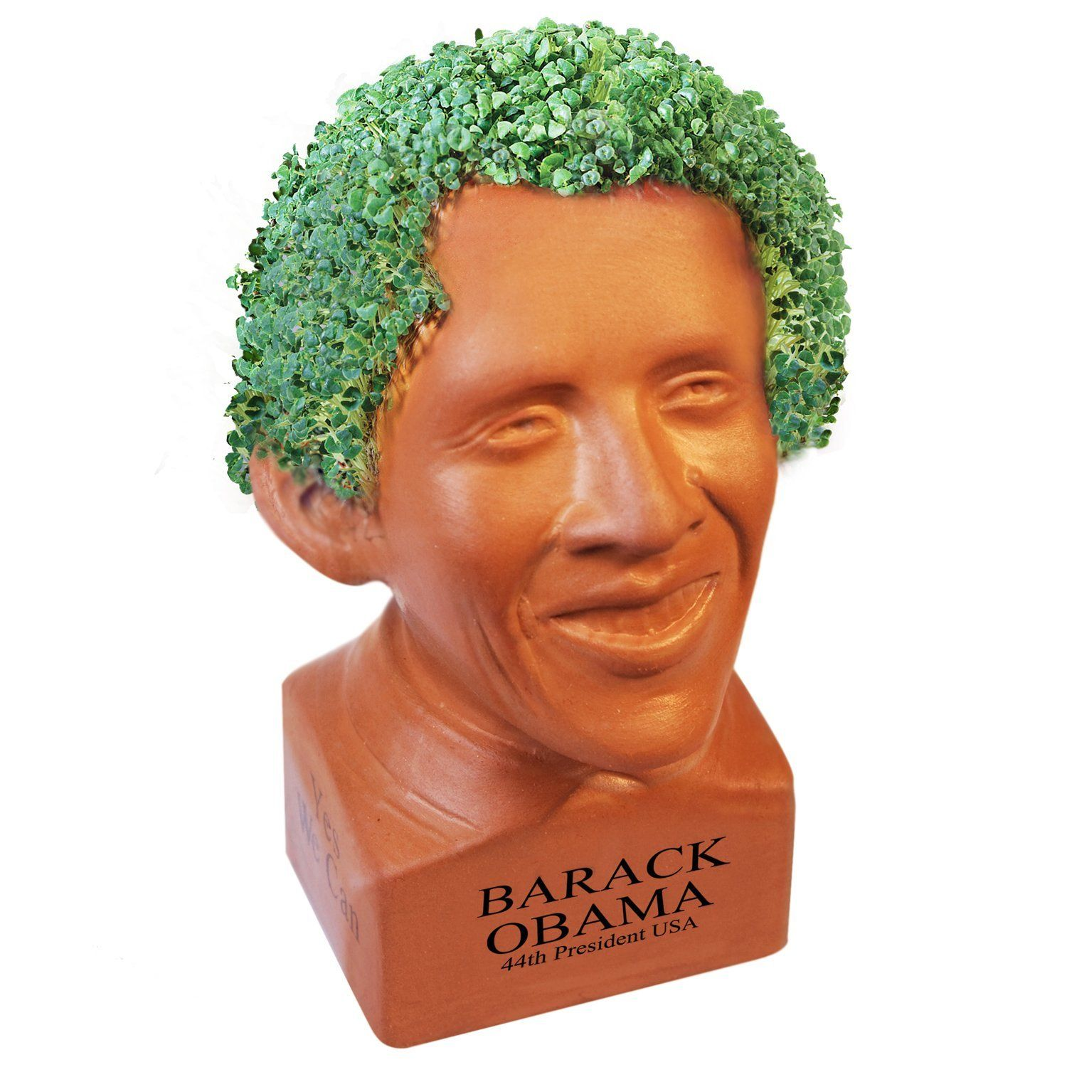 This Is Real Obama Chia Pet Barack Obama Barack