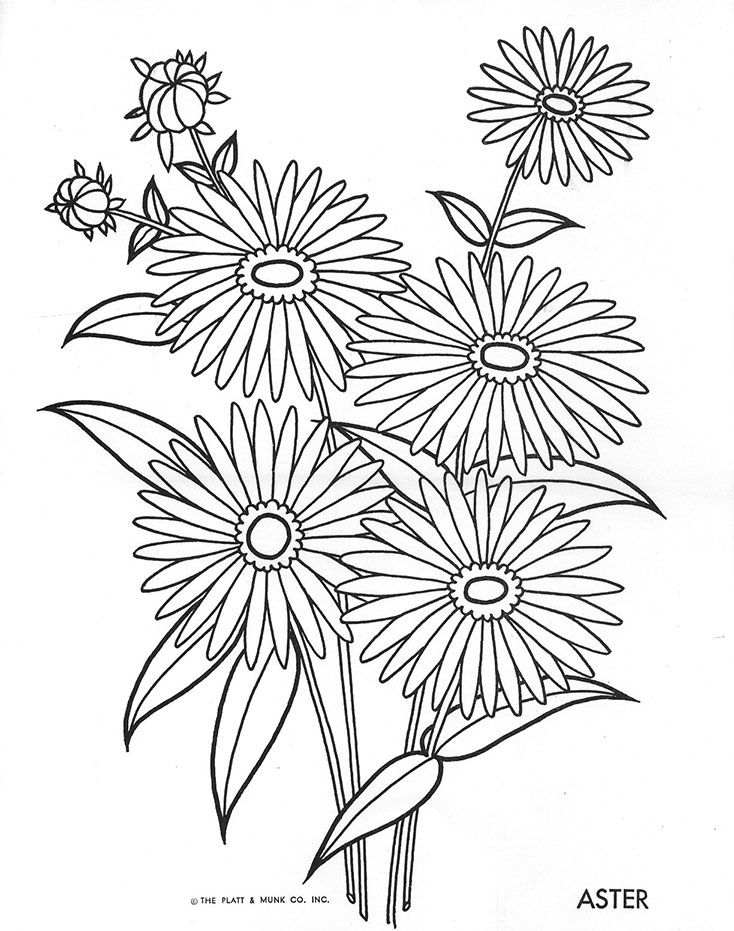 Flowers To Color With Images Flower Coloring Pages Coloring