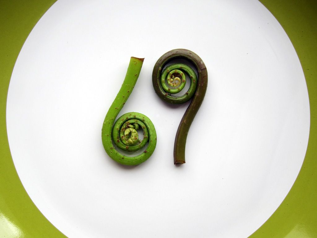 Lady Fern fiddleheads from the Oregon coast...Oh behave!!