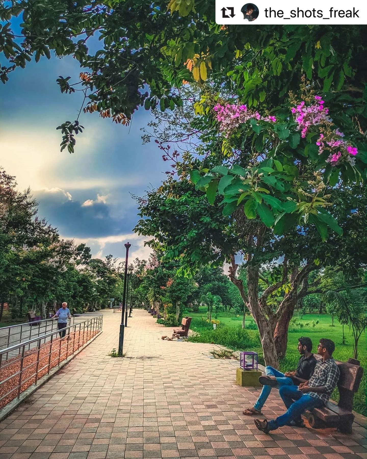 #bhubaneswarbuzz #forestpark pic courtesy  @the_shots_freak  A sunset feels better with someone's company. Agree or not ?  #travelrealindia #odishastreetphotography #moodisha #bhubaneswarbuzz #bhubaneswar #tripotocommunity #ngtindia #incredibleindia #storiesofindia #myindianphoto #shotonphone #full_phoneography #natgeoyourshot #chitramandali #_coi #bobbyjoshi #nustaharamkhor