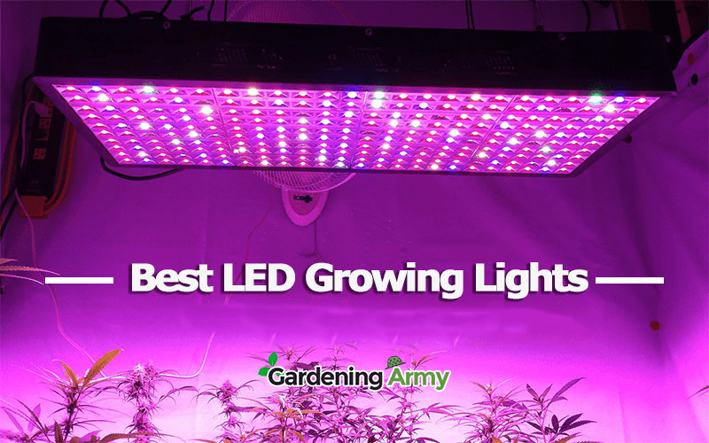 5 Best Led Grow Light Reviews 2019 Updated Buying Guide Led Grow Lights Grow Lights Best Led Grow Lights