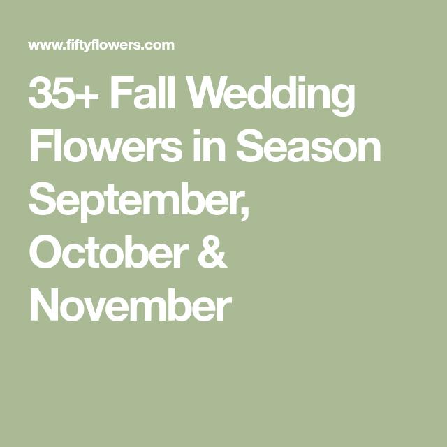 Wedding Flowers For November: 35+ Fall Wedding Flowers In Season September, October
