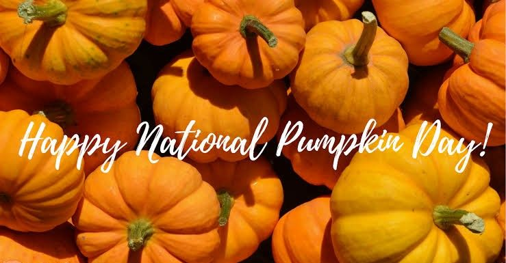 Today Is National Pumpkin Day Organic Sheets Organic Bedding Organic Bath Products
