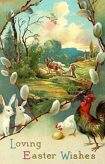 bunines and chicks look into landscape