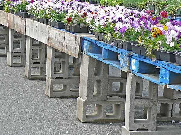 Pallet Concrete Block Nursery Plant Table With Images Plant