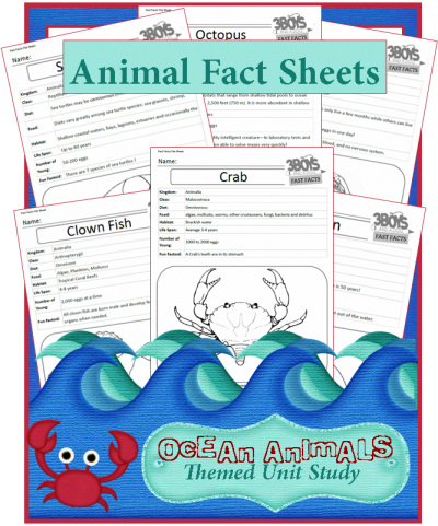 Free Ocean animal fact sheet printables   Science for Animal Lovers ...
