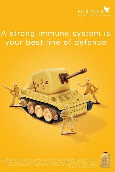 Renforcer notre système immunitaire avec aloès vera
