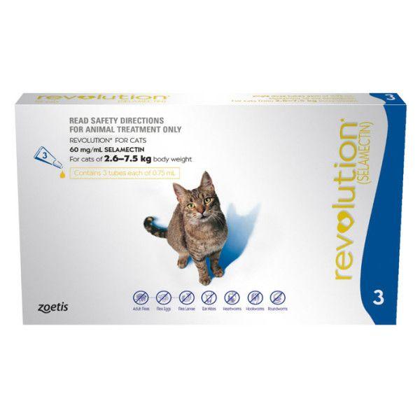 Revolution Cat Blue Cat Catproducts Http Www Nojigoji Com Au Cat Fleas Revolution Cats Fleas