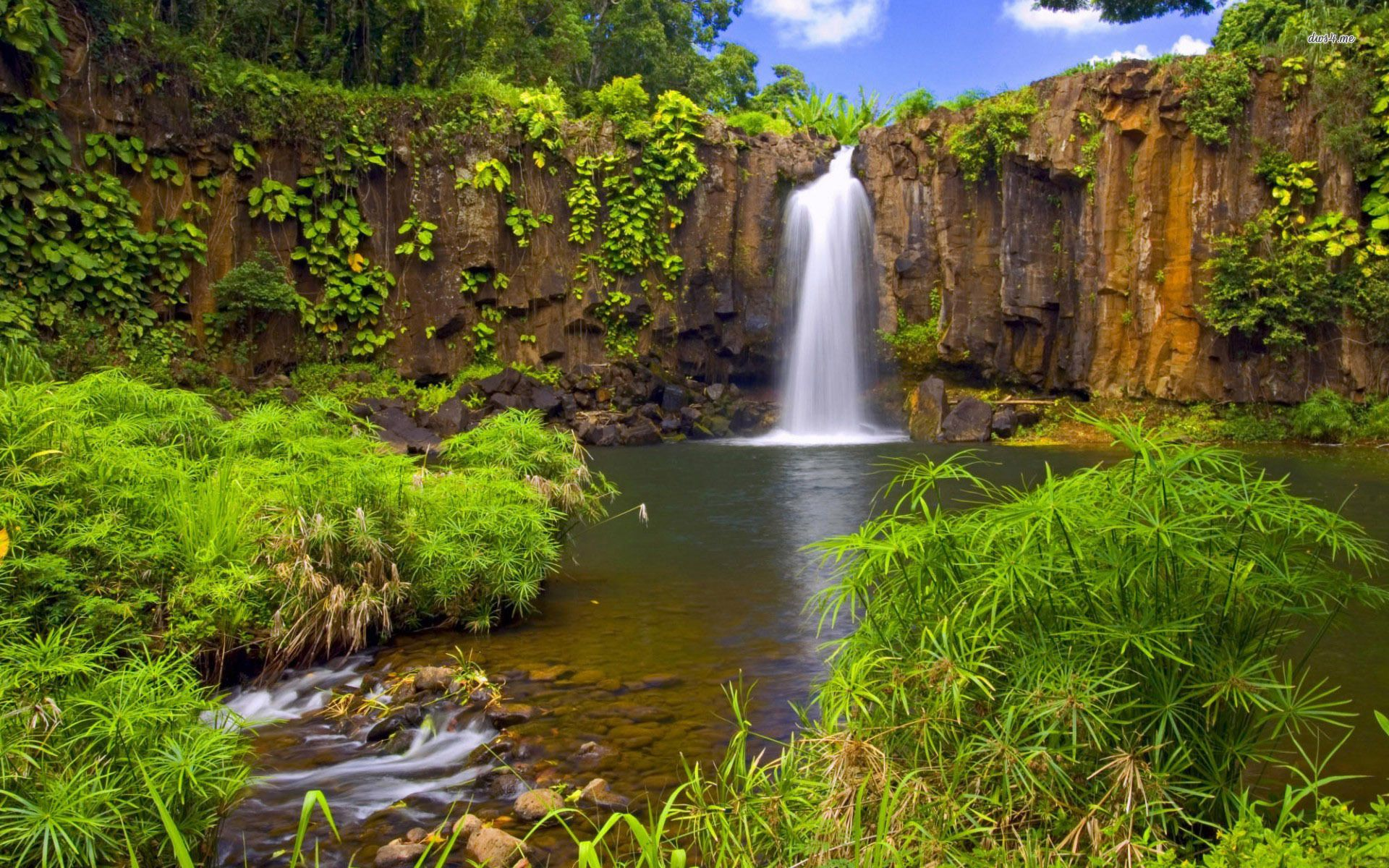 Jungle Waterfall Jungle waterfall wallpaper Nature