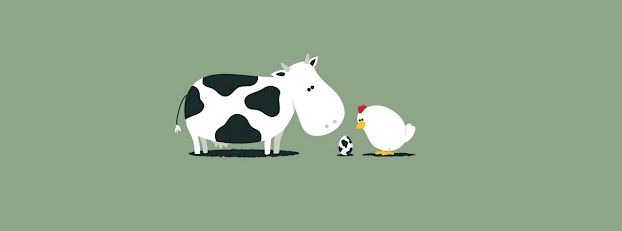 Facebook Covers Funny Wallpaper Cow Wallpaper Cows Funny