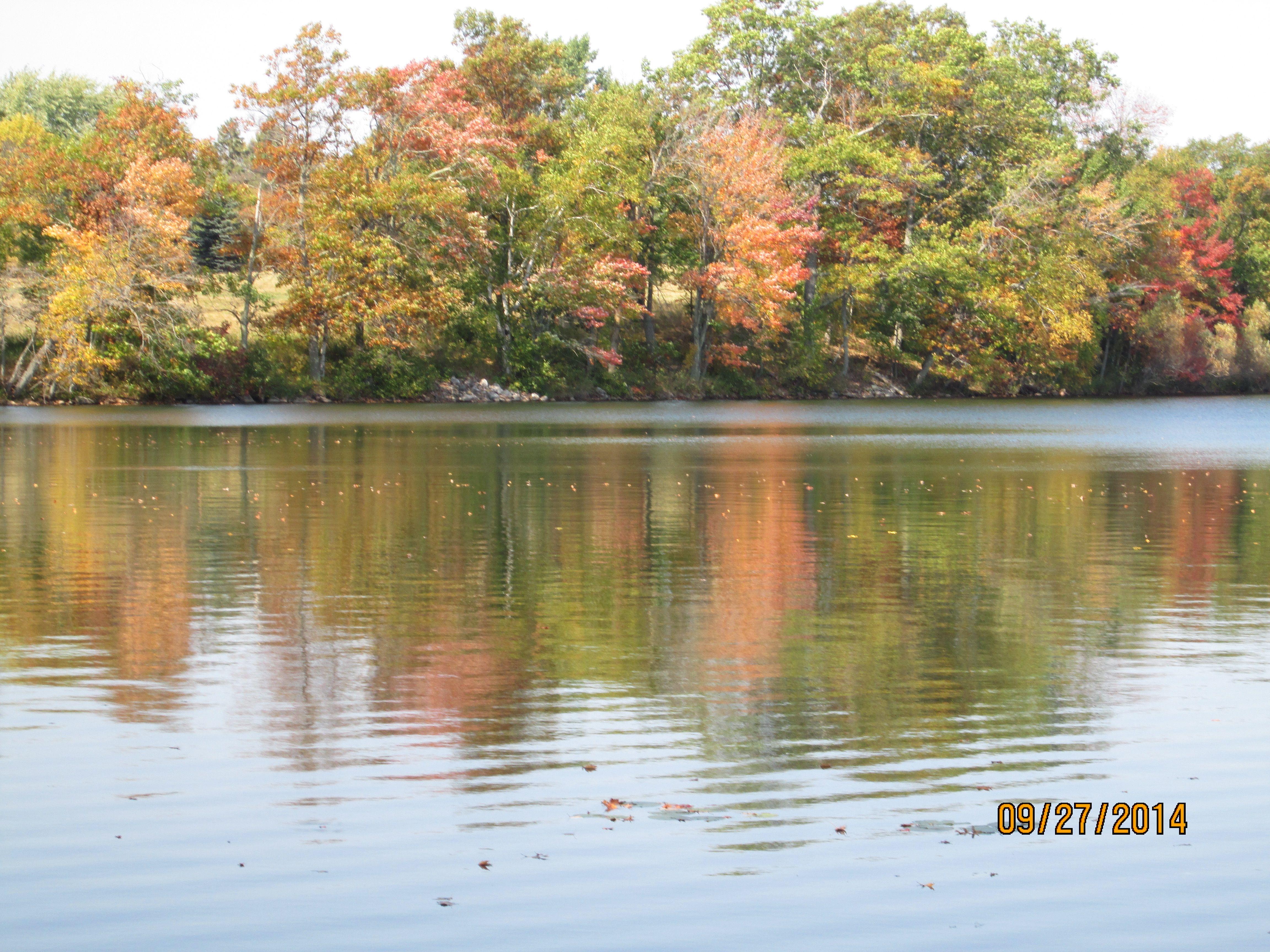 "A "" Fall "" View.....Across Lone Lake"