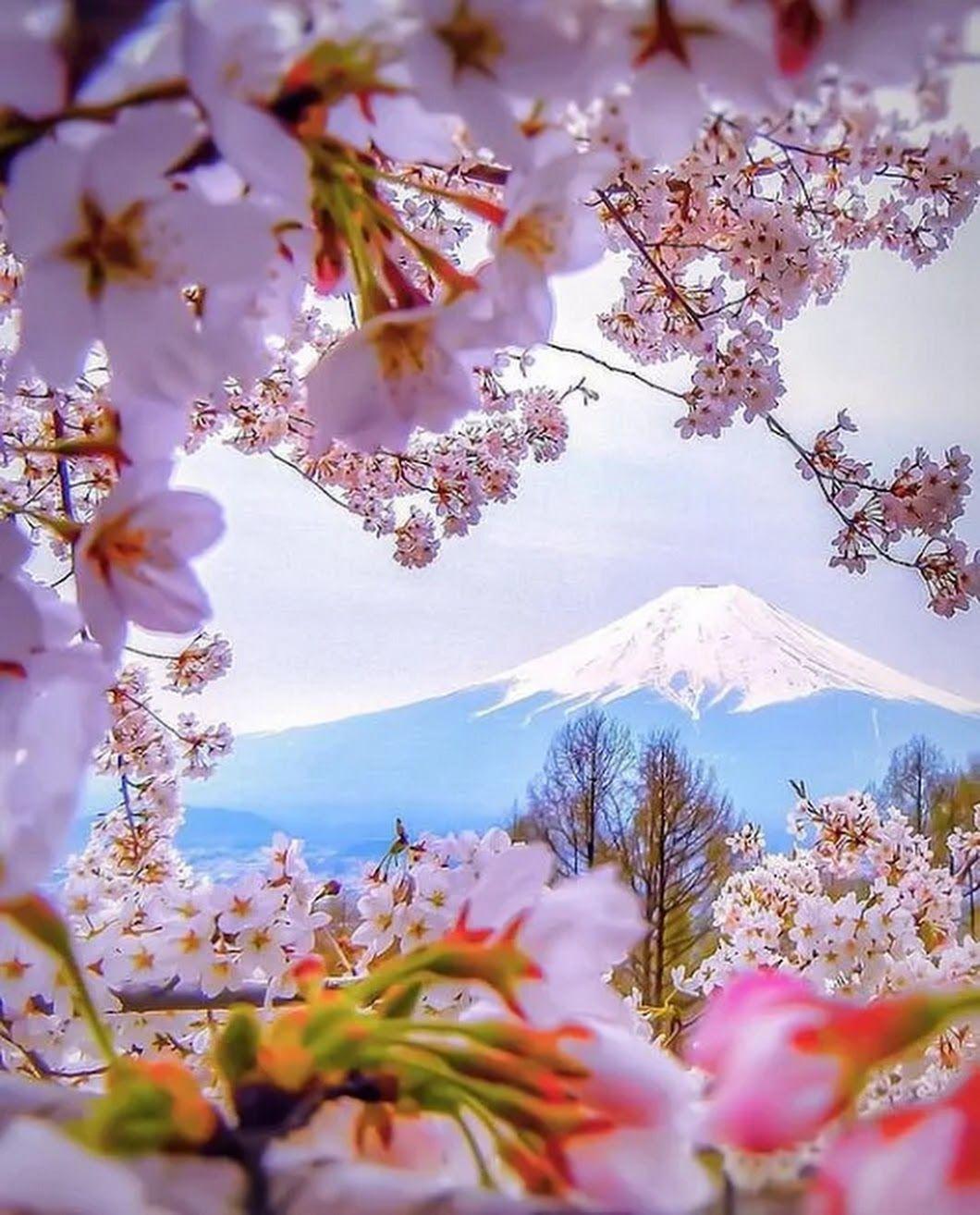 Anitha K Google Beautiful Nature Nature Nature Photography