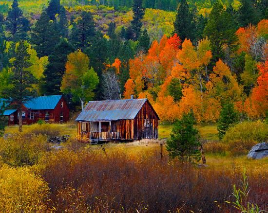 South Lake Tahoe, CA: Hope Valley Cabins