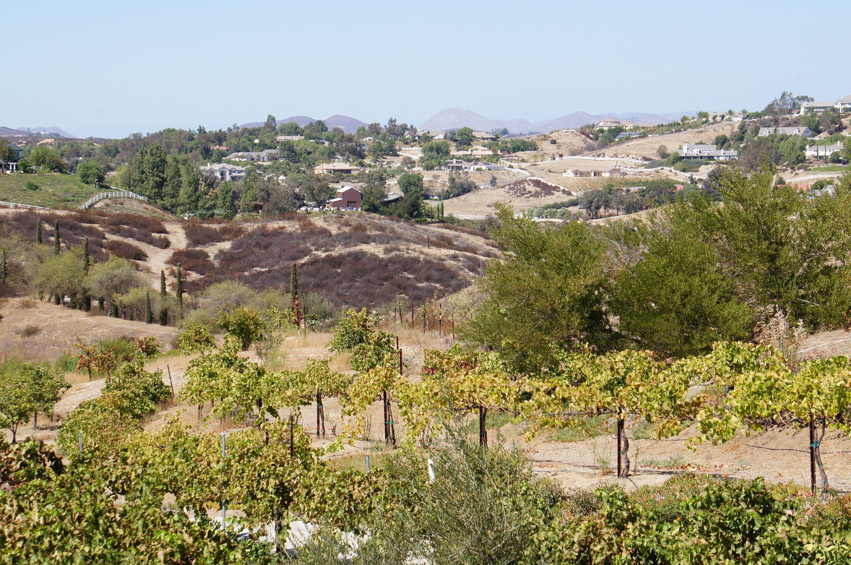 Northern view from Mount Palomar Winery San bernardino