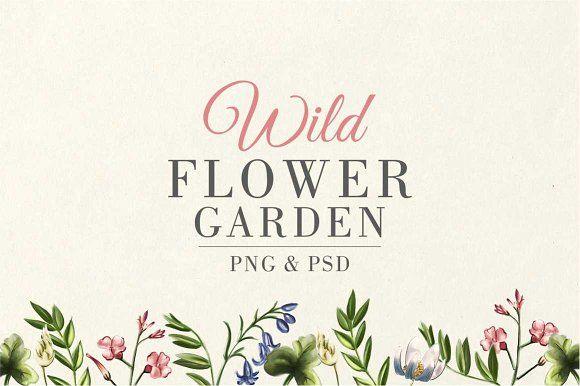 Wild Flower Garden Wildflower Garden Flower Garden Flower Illustration