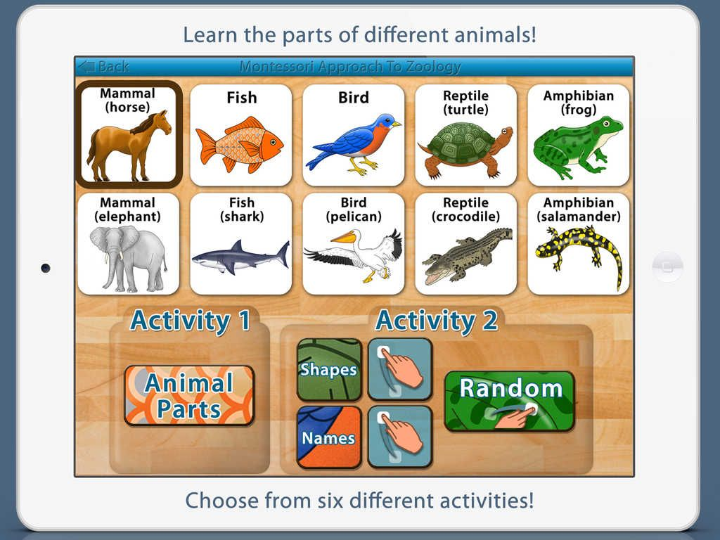 Enjoy This Major Update To Our Parts Of Animals