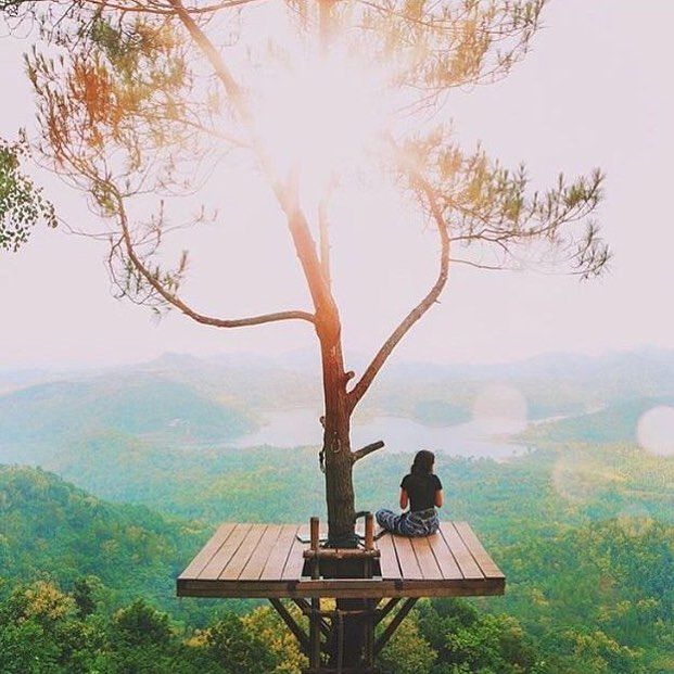"Instagram post by Explorer Babes • Feb 29, 2016 at 429pm UTC is part of Tree house - 5,315 Likes, 83 Comments  Explorer Babes (@explorerbabes) on Instagram ""📍 Wisata Alam Kali Biru, Jogjakarta, Indonesia  Pic by @agunghab  explorerbabes"""