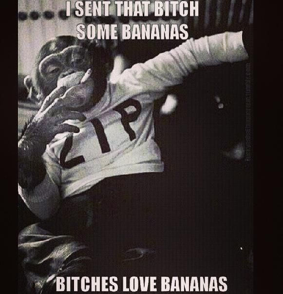 I Sent That Bitch Some Bananas Bitches Love Bananas Funny