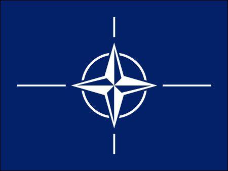 Nato Flag The North Atlantic Treaty Organization Nato Flag Flag Coat Of Arms