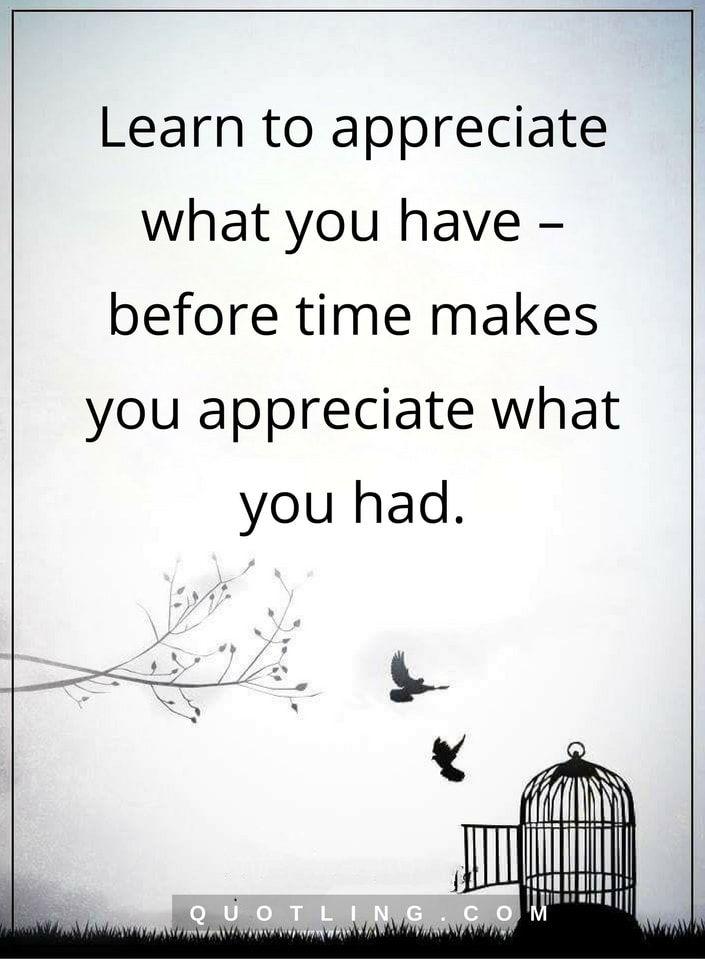 appreciate quotes learn to