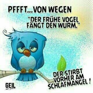 Guten Morgen Spruche Bilder Kostenlos Bilder Herunterladen Gb Bilder Morning Humor Humor Life Humor