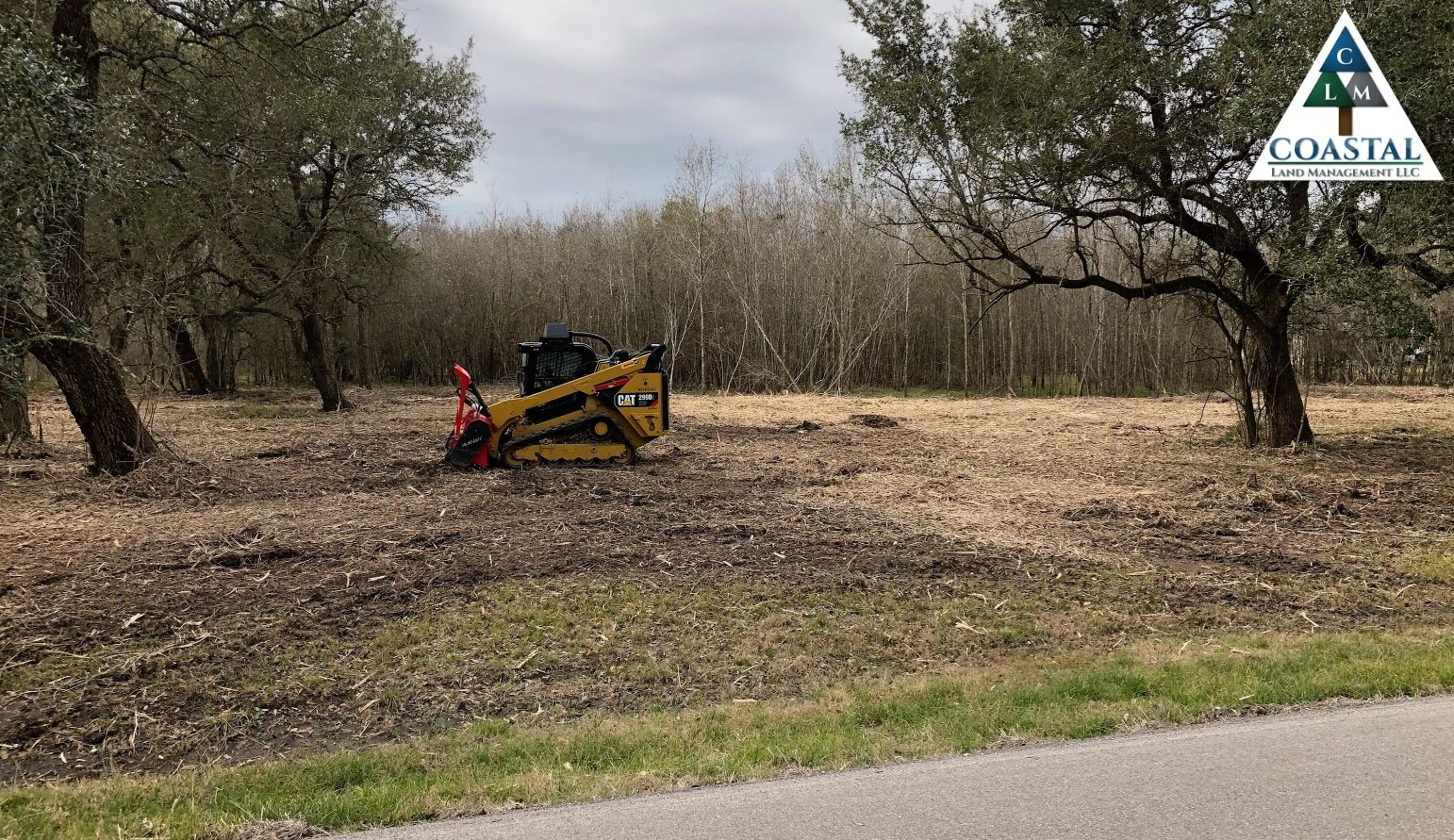 Forestry mulching in sweeny tx give us a call 979373