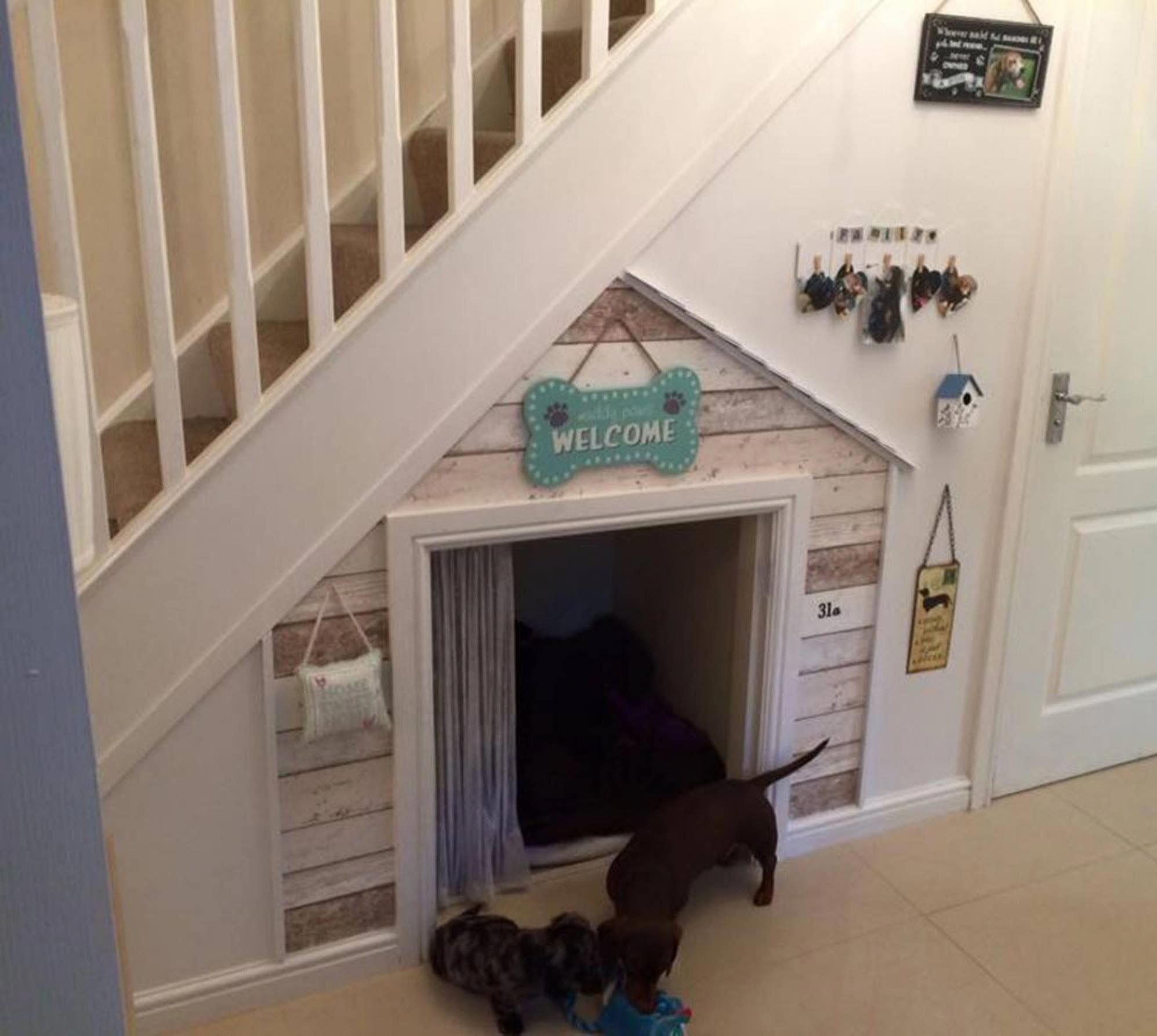 Dog Areas In House Under Stairs