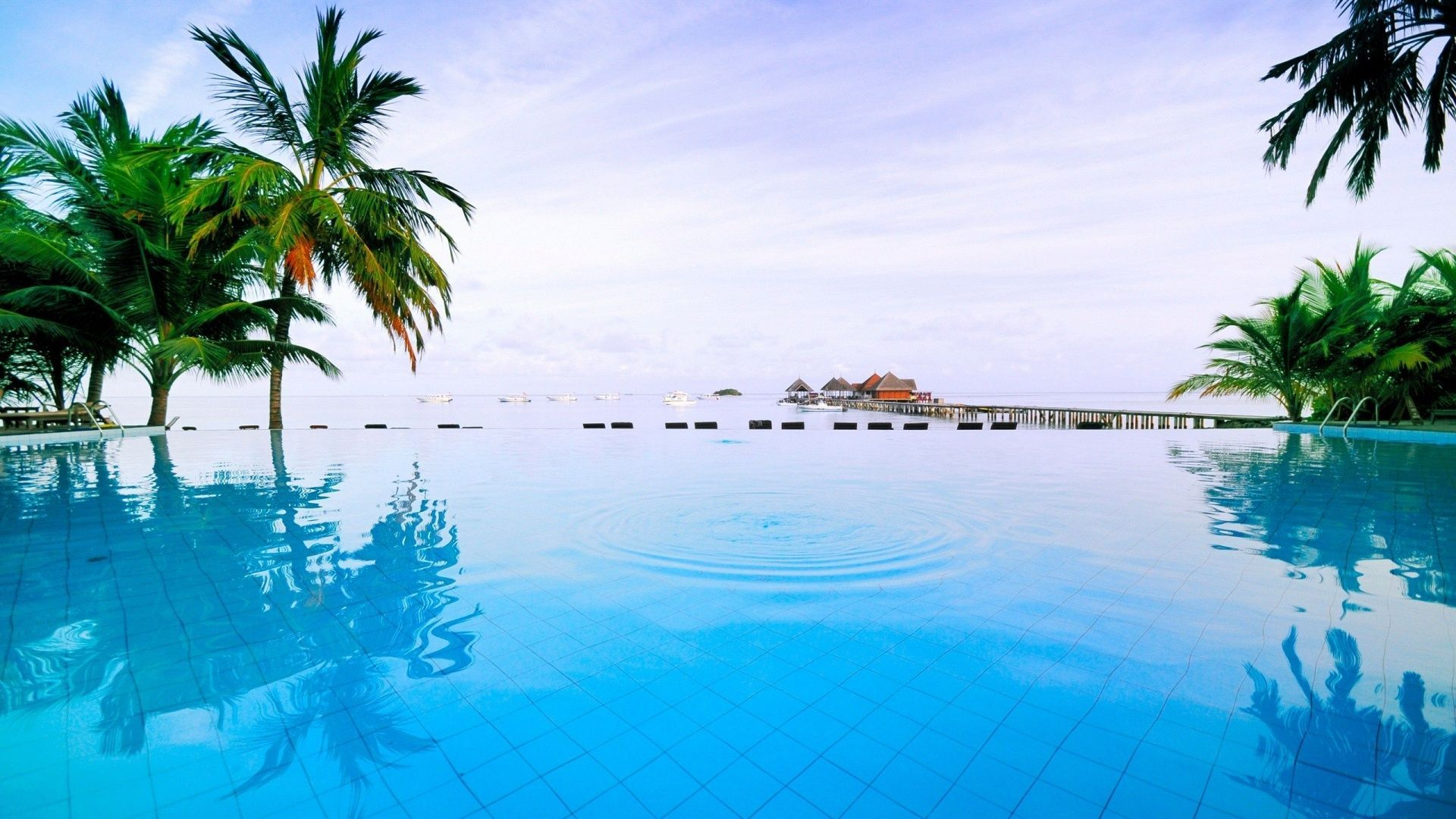 Palm Trees Resort Nature Tropical Pool Wallpaper 720x1520 Download And Share Beautiful Image In Best Availa Tropical Pool Holiday Wallpaper Tropical Resort
