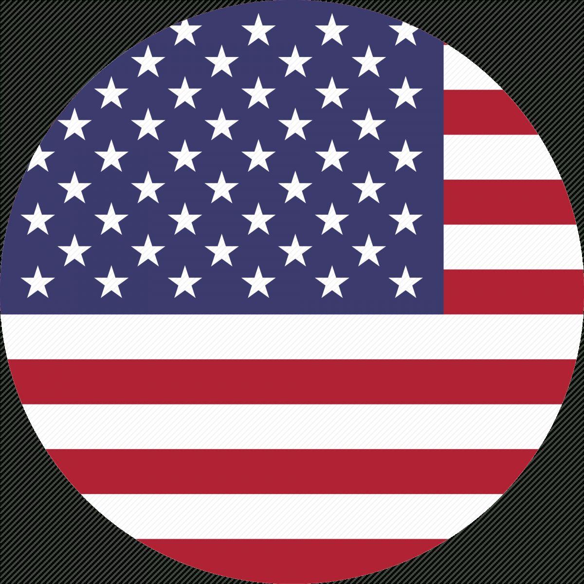 12 American Flag Icon Png Flag Icon American Flag Flag