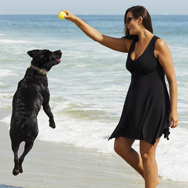 Even in the dog days of summer, we've got just what you need. Happy #NationalDogDay!